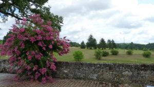 Chateau de Sadillac golf